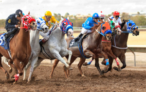 Horses With Riders at Rillito Park Racetrack (Photo by Resul Kurtbedin)