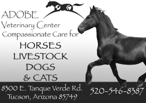 Adobe Vet Center Ad